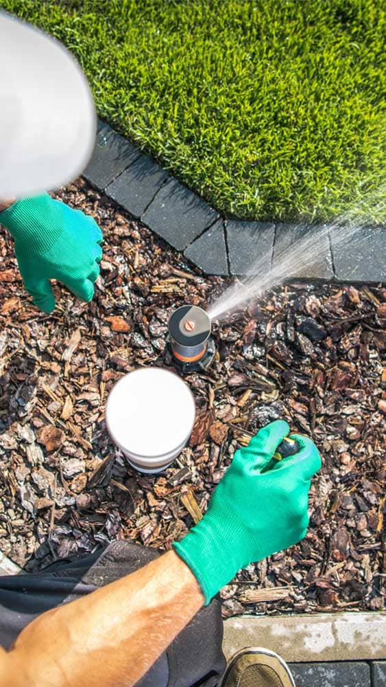 Entretien par jardiniers paysagistes professionnels
