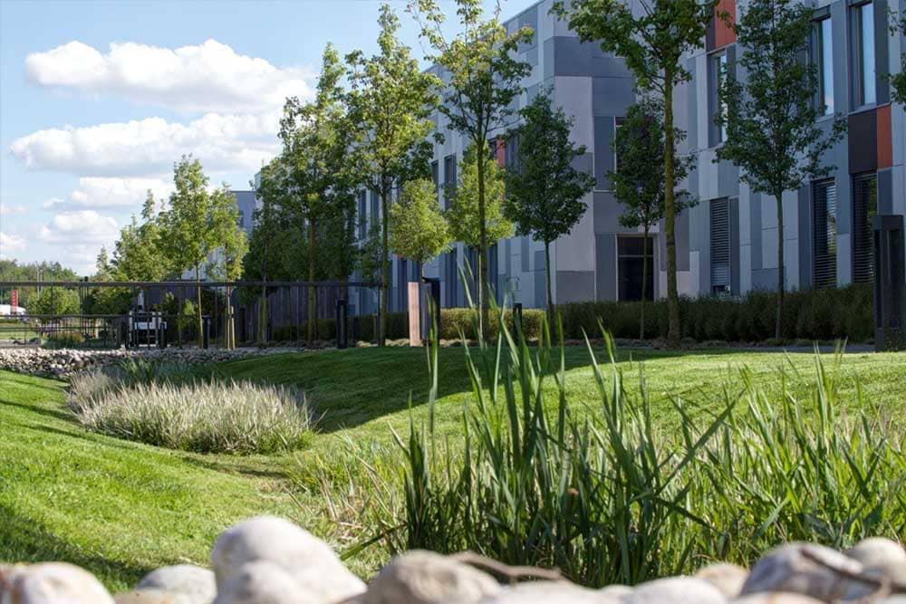 Planification entretien parcs et jardins