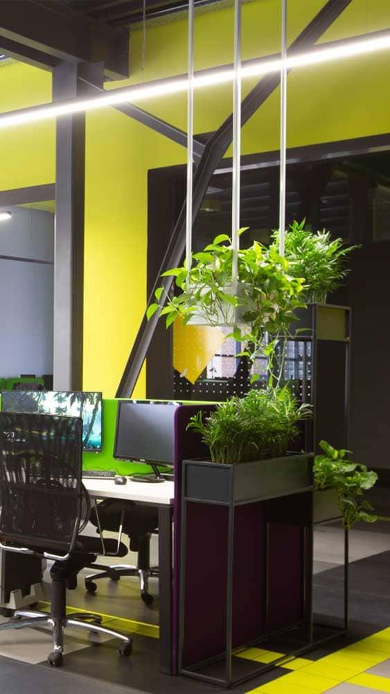Plantes bureau et open space