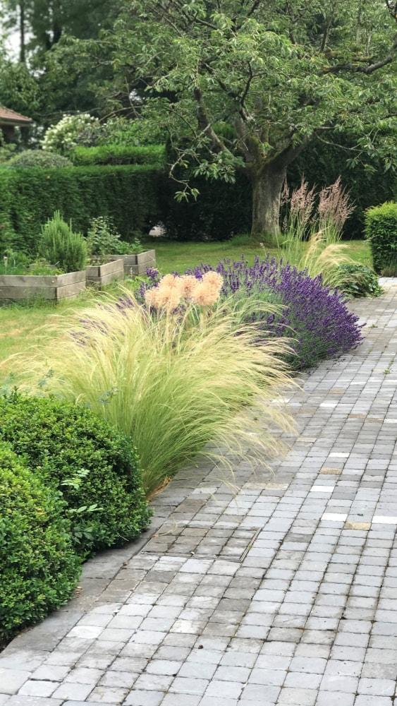 Aménagement jardin particulier Villeneuve d'Ascq - Plantation arbustes et massifs