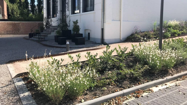 Planification de l'entretien et aménagement d'espaces verts en entreprise