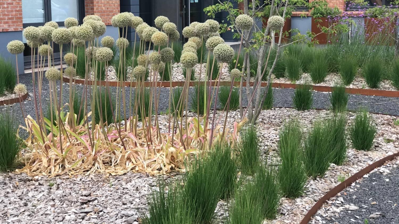 Création de massifs jardiniers paysagistes - Sarbacane à Hem