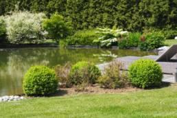 Entretien parcs et jardins - Thieffry Parc & Jardin