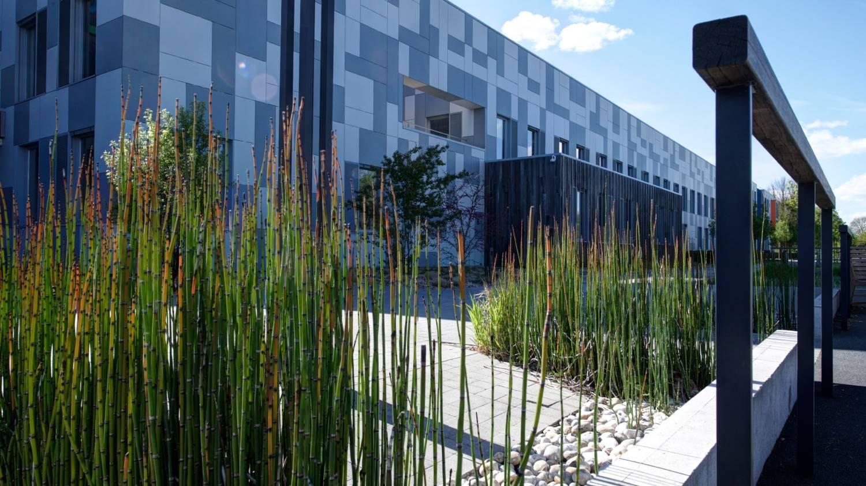 Entretien des espaces verts extérieurs d'entreprise - Thieffry Parc & Jardin Lille