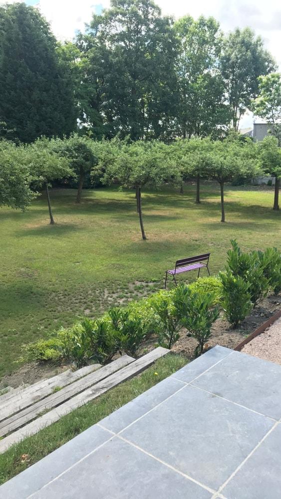 Entretien verger UCH à Lille par Thieffry Parc et Jardin - Plantation arbres