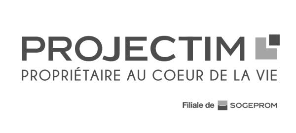 Projectim Logo