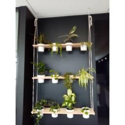 Végétalisation de bureaux - Installation plantes murales