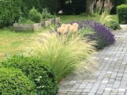 Aménagement jardin particulier - Création Thieffry Villeneuve d'Ascq