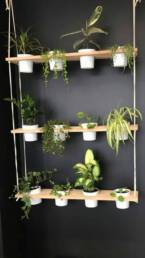 Mur végétal bureau entreprise aménagement